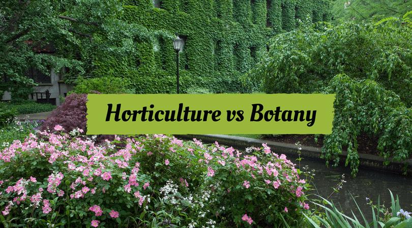 Horticulture vs Botany