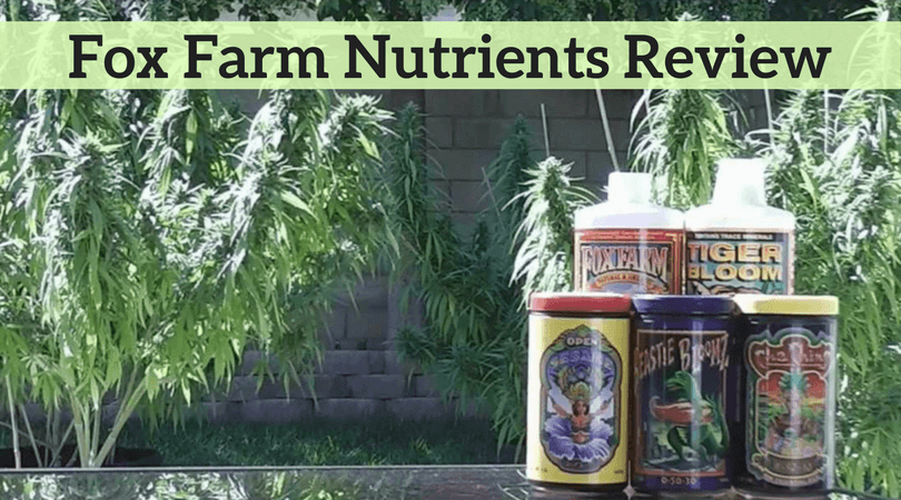 Fox Farm Nutrients Review