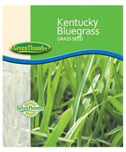 Barenbrug 491123 Kentucky Bluegrass Seed
