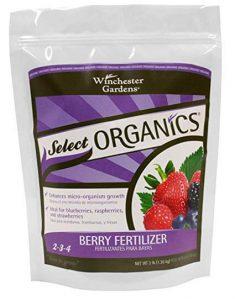 Organics Berry Granular Fertilizer