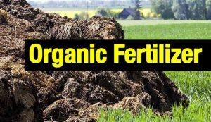 organic-fertilizer-production-process
