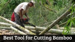 Best Tool for Cutting Bamboo