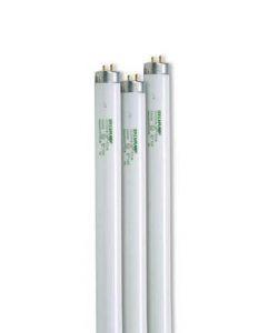 SunLite T8 Bulbs for Growing Plants