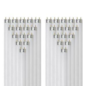 SunLite F25T8/SP730 Bulbs