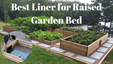 Best Liner for Raised Garden Bed