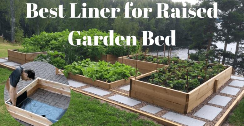 Best Liner for Raised Garden Bed