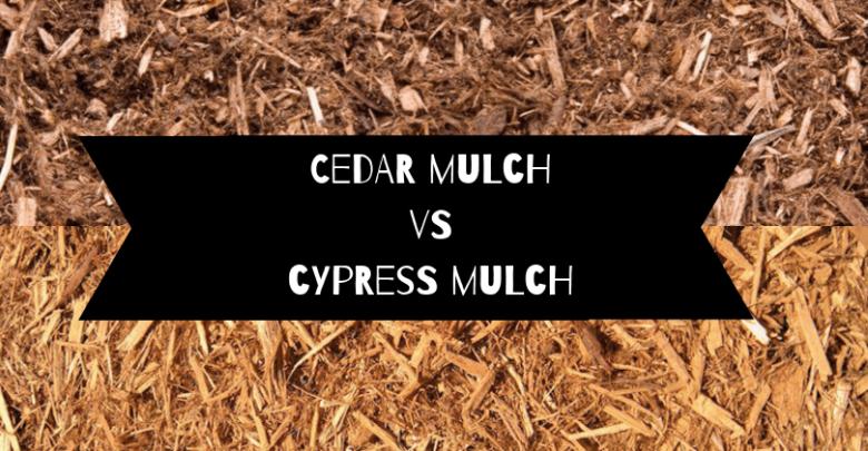 Cedar mulch vs cypress mulch