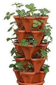 Mr. Stacky 5-Tier Strawberry Planter