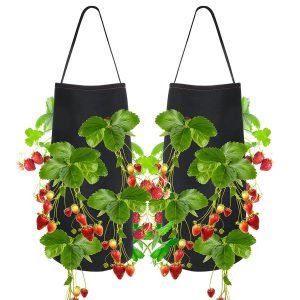 Pri Gardens Hanging Strawberry Planter
