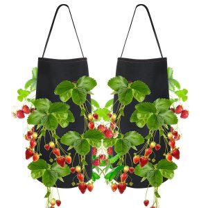 Pri Gardens Hanging Strawberry Planter