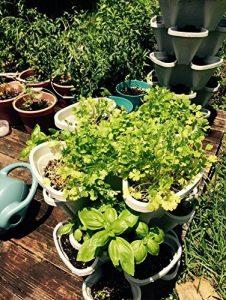 3 Tier Stackable Herb Garden Planter Set