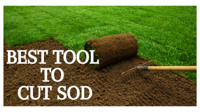 tool to cut sod