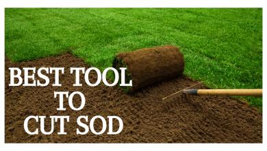 tool to cut sod