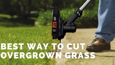 Best Way to Cut Overgrown Grass