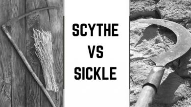Scythe vs sickle