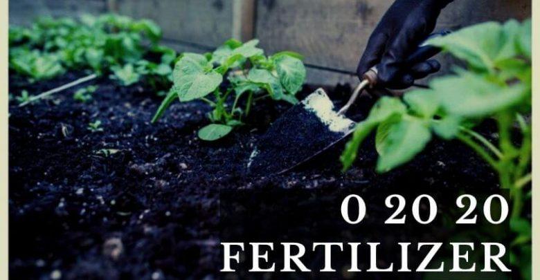 0 20 20 Fertilizer
