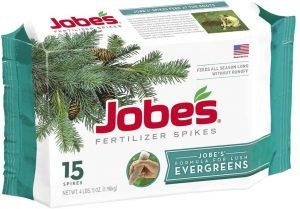 Jobe's Everygreen fertilizer