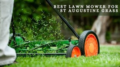 Best lawn mower for st Augustine grass