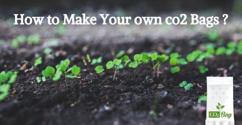 How to make your own co2 bags