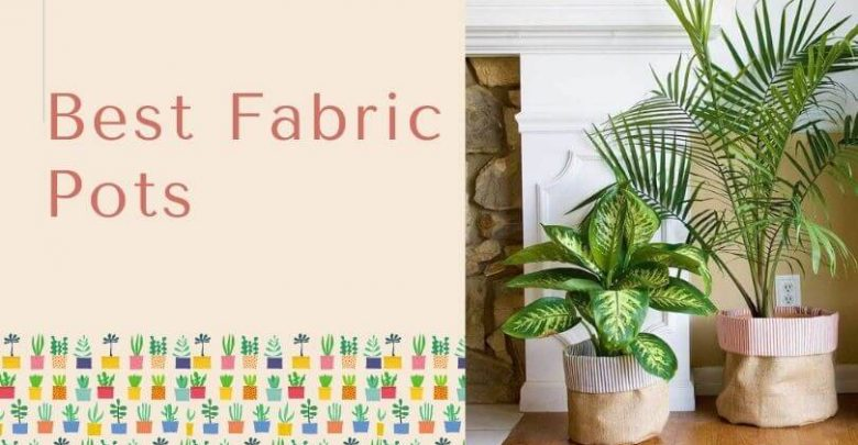 Best Fabric Pots