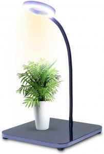Qudo Grow Light For Bonsai