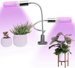 Asani Bonsai LED Indoor Light
